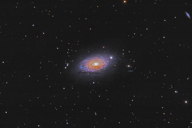M63 - the Sunflower Galaxy in Canes Venatici